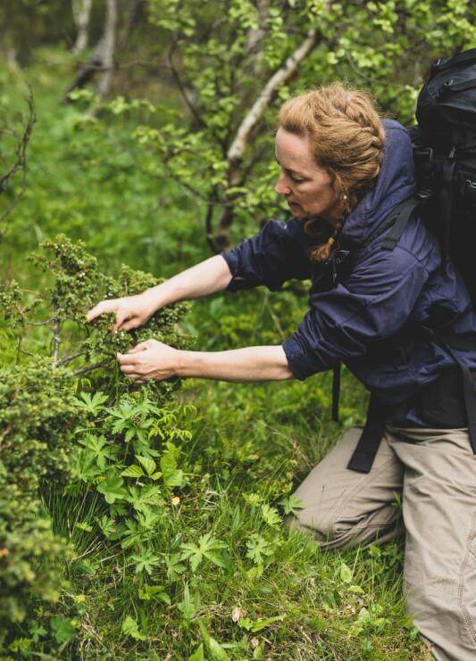 For Kristin Helene Randulff Nielsen er hver tur en sanke-tur.