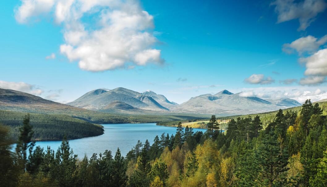 Hva med å besøke flotte fjellområder i Rondane i sommer?