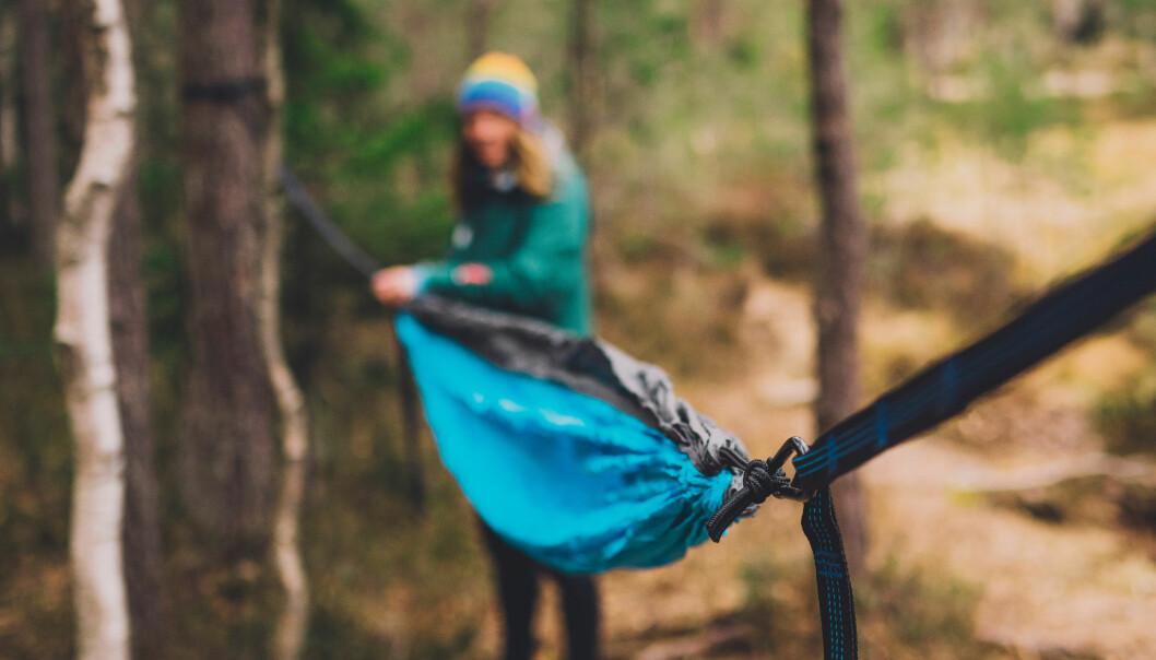 TURTIPS: Bruk slynger for å henga opp køya, ikkje tau. Slynger skånar treeet og fordeler vekta av deg utover, medan tau etterlet større sår i stammen.