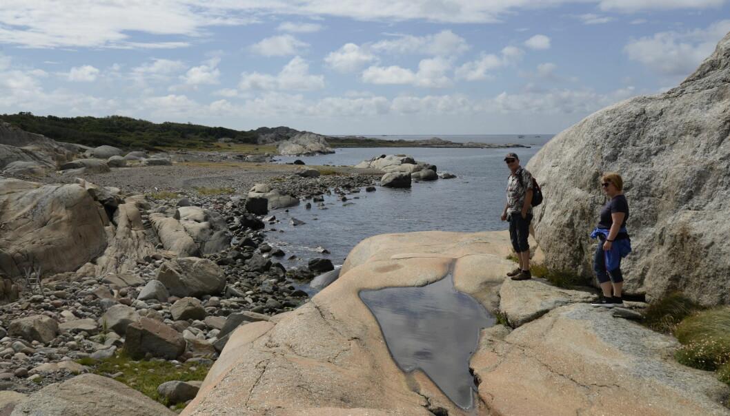 Hugo Kohmann har fulgt kysten til fots fra Halden til fylkesgrensa mot Telemark.